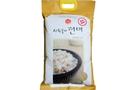 Buy Sempio Sempio Brown Rice - 15lb