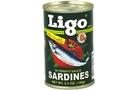 Sardines in Tomato Sauce (Green) - 5.5oz [12 units]