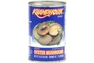 Oyster Mushroom [6 units]
