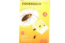 Buy Cockroach Trap - 4 Pcs