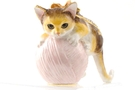 Buy Kitten Jeweled Box #3452