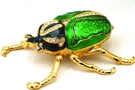 Buy Green Bug Jewelry Box