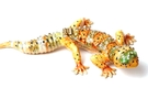 Buy Lizard Jewelry Box