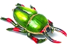 Buy Bug Jewelry Box #3593