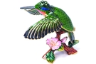 Buy Hummingbird Jewelry Box
