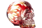 Buy Red Flame Translucent Skull