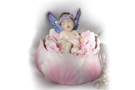 Buy Flight Dream Trinket Box