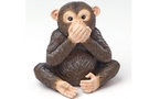Buy Chimpanzee (set of 4)