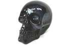Buy Black Translucent Skull