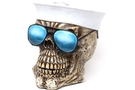 Buy Navy Skull Bank