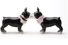 Buy Pacific Magnetic Salt and Pepper Shaker Set (The Boston Pups)  - 4 inch