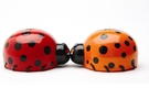 Buy Magnetic Salt and Pepper Shaker Set (Lovely Lady Bugs) - 1 1/4 inch