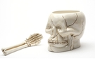Buy Skull Bowl with Skeletal Spoon