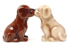 Buy Magnetic Salt and Pepper Shaker Set (Chocolate and Blonde Labs) - 4 inch