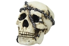 Buy Skull w/ chains