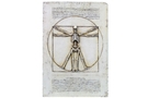 Buy Vitruvian Skeleton Plaque