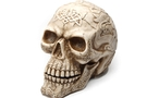 Buy Large Celtic Skull
