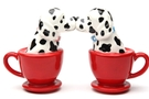 Buy Magnetic Salt and Pepper Shaker Set (Tea Cup Dalmatians) - 3 1/2 inch