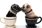 Buy Magnetic Salt and Pepper Shaker Set (Tea Cup Pugs) - 4 inch
