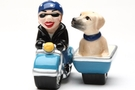 Buy Magnetic Salt and Pepper Shaker Set (Dog Gone Side Car) - 4 inch
