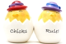 Buy Magnetic Salt and Pepper Shaker Set (Chicks Rule!) - 4 inch