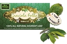 Soursop Leaves (All Natural 25 Dried Graviola Leaves) [3 units]