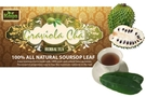 Graviola Cha (100% All  Natural Pure Soursop Tea / 25-ct) [6 units]
