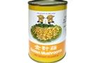 Buy Dragon 88  Golden Mushrooms (Enoki Mushroom) - 15oz