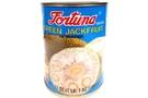 Buy Fortuna Green Jackfruit In Water - 17oz