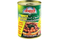 Fava Beans in Brine (Egyptian Recipe) - 14oz