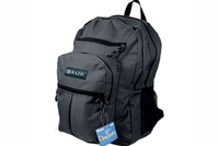 School Backpack (17 inch)