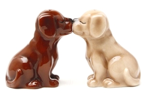 Magnetic Salt and Pepper Shaker Set (Chocolate and Blonde Labs) - 4 inch