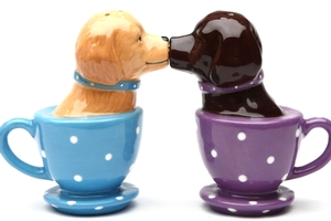 Magnetic Salt and Pepper Shaker Set (Tea Cup Labs) - 2 1/2 inch