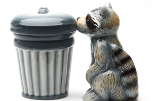 Magnetic Salt and Pepper Shaker Set (Racoon And Trash) - 4 inch