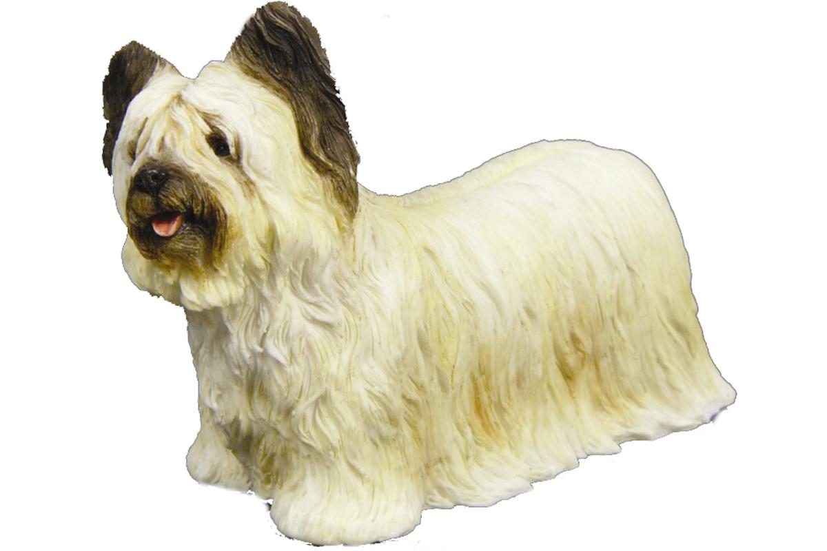 Skye Terrier's Gallery