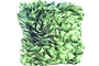 Buy NA Green Ruffle Cushion (Green 12 x 16 x 5)