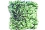 Green Ruffle Cushion (Green 12 x 16 x 5)