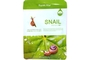 Buy Farm Stay Snail Visible Difference  Mask Sheet 23ml/0.78FL.Oz