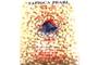 Buy Tapioca Pearl White (Bot Bang) - 14oz