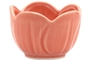 Buy Hijiri Small Plate(Pink)