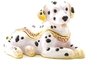 Buy Pacific Dalmatian Jeweled Box