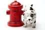 Magnetic Salt and Pepper Shaker Set (Wheres The Fire) - 4 inch