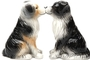Buy Pacific Magnetic Salt and Pepper Shaker Set (Aussie shepherd dog) - 4 inch