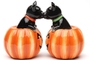 Buy Pacific Magnetic Salt and Pepper Shaker Set (Black Cat Pumpkins) - 3 1/2 inch
